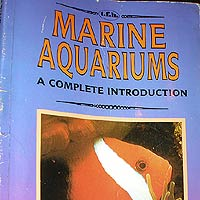 Marine Aquariums: A Complete Introduction