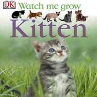 Watch Me Grow Kitten