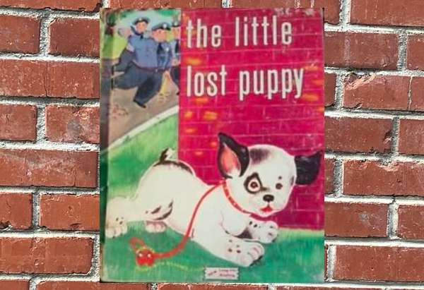 The Little Lost Puppy