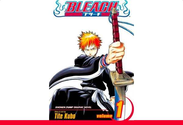 Bleach Volume 1