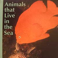 Animals that Live in the Sea