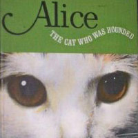 Alice, the Cat Who Was Hounded
