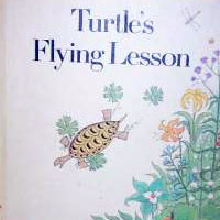 Turtle's Flying Lesson