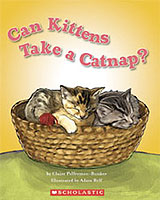 Can Kittens Take a Catnap?