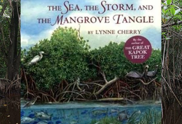 The Sea, the Storm, and the Mangrove Tangle by Lynne Cherry: mangroves can take root in salt water.