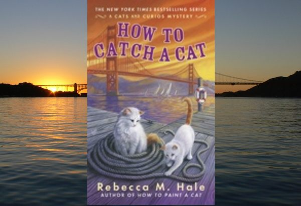 How to Catch a Cat by Rebecca M. Hale