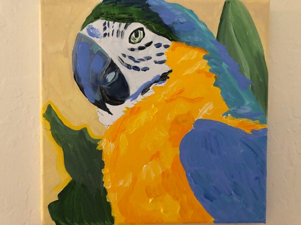 Macaw painting, not yet finished