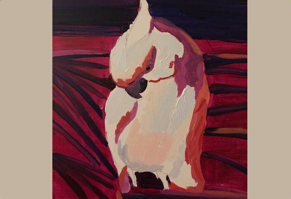 Partially finished cockatoo painting