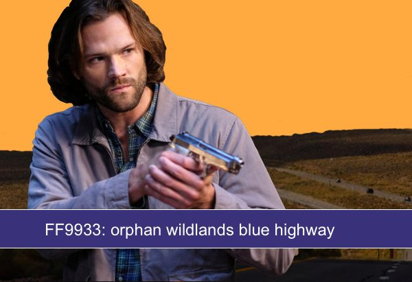 FF9933: orphan wildlands blue highway