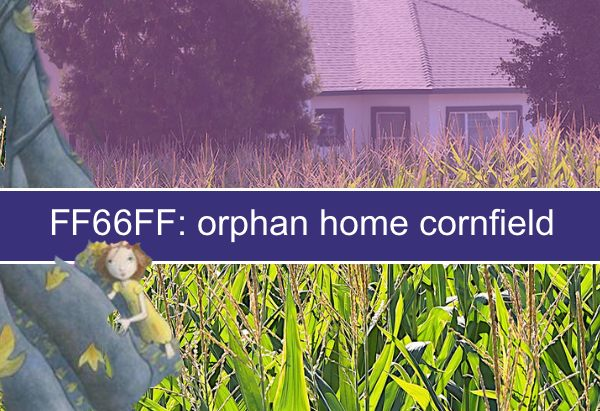 FF66FF: orphan home cornfield: or who lives alone in a cornfield?