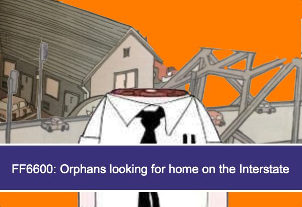 FF6600: Orphans looking for home on the Interstate