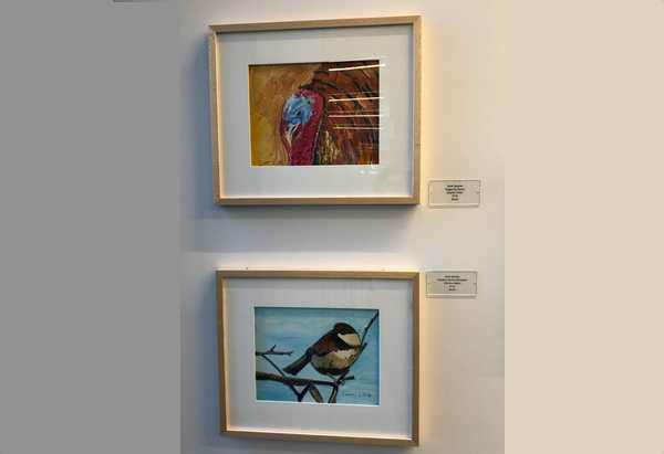 Framed paintings of a herritage turkey and a chestnut backed chickadee