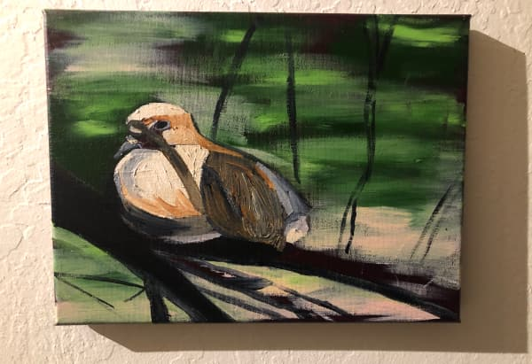 A mourning dove in a plum tree: wip