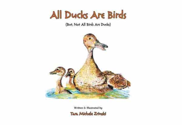 All Ducks Are Birds: But, Not All Birds Are Ducks