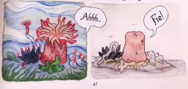 Two panels showing a sea anemone, open and closed.